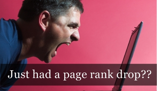 What to do when you had a Page rank drop?