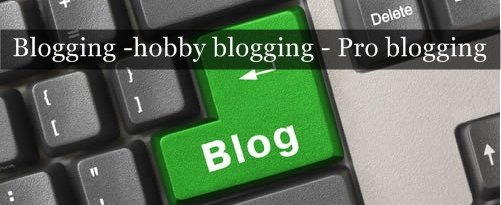 Extended guide from blogging to pro blogging